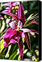 Photography Digital Art Canvas Prints - Flower Painting 0002 Canvas Print by Metro DC Photography