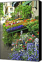 Architecture Photo Canvas Prints - Flower stand in Paris Canvas Print by Elena Elisseeva