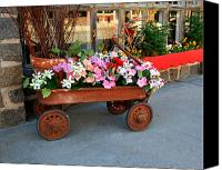 Potography Canvas Prints - Flower Wagon Canvas Print by Perry Webster
