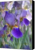 Violet Prints Photo Canvas Prints - Flowers 12 Canvas Print by Joyce StJames