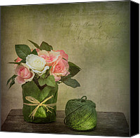 Ball Canvas Prints - Flowers and A Ball of String Canvas Print by Ian Barber