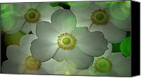 Louis Ferreira Art Canvas Prints - Flowers in my Garden Canvas Print by Louis Ferreira