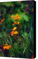 Photo-manipulation Canvas Prints - Flowers in the Woods at the Haciendia Canvas Print by David Lane