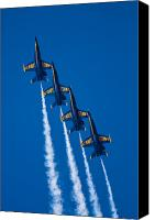 Demonstration Photo Canvas Prints - Flying High Canvas Print by Adam Romanowicz