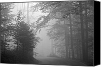 Tree Trunk Canvas Prints - Foggy Forest Canvas Print by Yago Veith