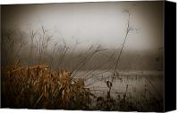 Florida Nature Photography Canvas Prints - Foggy Morning Marsh Canvas Print by Carolyn Marshall