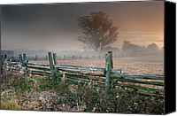 Farm Canvas Prints - Foggy Petaluma at Dawn  Canvas Print by Kent Sorensen