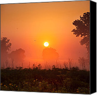 Goose Canvas Prints - Foggy Sunrise In The Prairie Canvas Print by Steve Gadomski