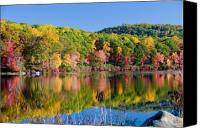 Foilage Canvas Prints - Foilage in the Fall Canvas Print by Anthony Sacco