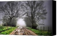 Country Scenes Canvas Prints - Follow the Fog Canvas Print by Emily Stauring