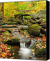 Autumn Foliage Canvas Prints - Foot Bridge- Macedonia Brook State Park Canvas Print by Thomas Schoeller
