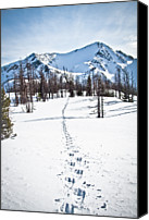 Mountain Scene Canvas Prints - Footprints Leads To Frosty Mountain Canvas Print by Christopher Kimmel