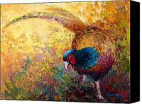 Pheasant Painting Canvas Prints - Foraging Pheasant Canvas Print by Marion Rose