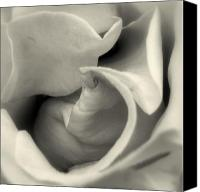 Wedding Flowers Ideas Canvas Prints - Foreplay Canvas Print by Louie Rochon