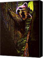 Raccoon Drawings Canvas Prints - Forest Baby Raccoon Canvas Print by Kelly McNeil