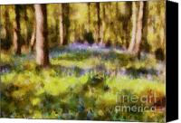 Poetic Digital Art Canvas Prints - Forest Bluebells Canvas Print by Zeana Romanovna
