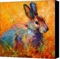 Hare Canvas Prints - Forest Bunny Canvas Print by Marion Rose