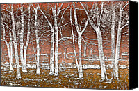 Brown Color Canvas Prints - Forest Ghosts Canvas Print by Debra and Dave Vanderlaan