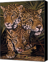 Wildcats Canvas Prints - Forest Jewels Canvas Print by Barbara Keith