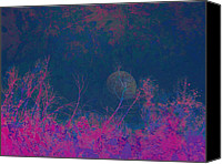Unnatural Canvas Prints - Forest Moon Canvas Print by Robert Ball