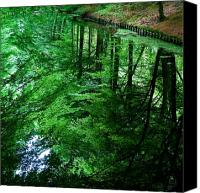 Lake Canvas Prints - Forest Reflection Canvas Print by David Bowman