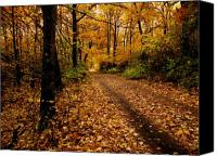 Fall Canvas Prints - Forest Trail Canvas Print by Scott Hovind