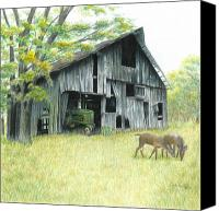 John Deere Tractor Canvas Prints - Forgotten Canvas Print by Carla Kurt