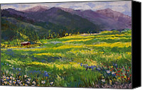 Cabin Canvas Prints - Forgotten Field Canvas Print by David Patterson