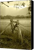 Barbed Wire Fence Canvas Prints - Forgotten Fields Canvas Print by Holly Kempe