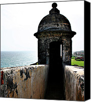Forest Canvas Prints - Fort San Juan Lookout Canvas Print by Gilbert Artiaga