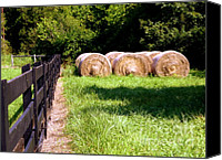 Fences Canvas Prints - Four Corners Canvas Print by Karen Wiles