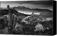 White Mountains Canvas Prints - Four Peaks AZ Sunset Canvas Print by Dave Dilli