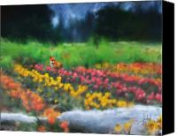 Vivid Colors Canvas Prints - Fox watching the Tulips Canvas Print by Stephen Lucas
