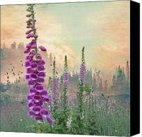 Pink Clouds Digital Art Canvas Prints - Foxglove in Washington State Canvas Print by Jeff Burgess