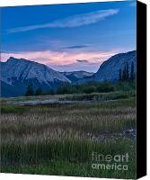 Foxtail Canvas Prints - Foxtail Sunset Canvas Print by Royce Howland