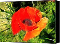 Poppy Digital Art Canvas Prints - Fractalius Poppy Canvas Print by Sharon Lisa Clarke