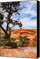 Hiking Canvas Prints - Framed Arch Canvas Print by Chad Dutson