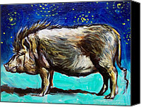 Pot-bellied Pig Canvas Prints - Frank Canvas Print by Sheila Tajima