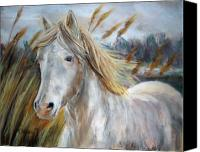 Wild Horse Pastels Canvas Prints - Free Canvas Print by Cathy Weaver