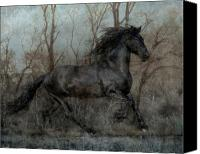 Stallion Canvas Prints - Free II Canvas Print by Jean Hildebrant