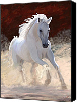 Grey Horses Canvas Prints - Free Spirit Canvas Print by James Shepherd
