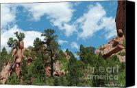 Garden Of The Gods Canvas Prints - Freebird Canvas Print by Paulette Wright