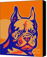 French Bulldog Canvas Prints - French Bulldog head portrait retro Canvas Print by Aloysius Patrimonio