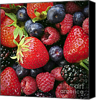 Backdrop Canvas Prints - Fresh berries Canvas Print by Elena Elisseeva