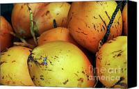 Fruit Markets Canvas Prints - Fresh coconuts for sale at a fruit market Canvas Print by Sami Sarkis