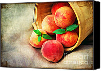 Fruit Markets Canvas Prints - Fresh Peaches Canvas Print by Darren Fisher