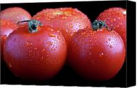 Drops Canvas Prints - Fresh Tomatoes Canvas Print by Gert Lavsen