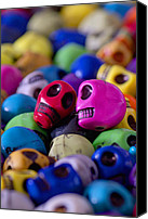 Dia De Los Muertos Canvas Prints - Friends Canvas Print by Mike Herdering