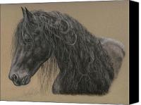 Equestrian Pastels Canvas Prints - Friesian Stallion Canvas Print by Terry Kirkland Cook