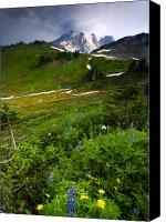 Mt. Rainier Canvas Prints - From the Top Canvas Print by Mike  Dawson